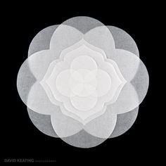 Denver Commercial Art Photography - Woven Life Sacred Geometry