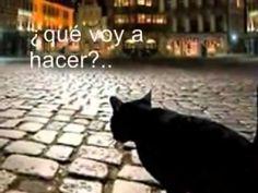 Gilbert Becaud - Et maintenant (subtitulos en español)