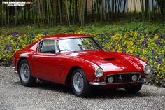 Ferrari 250 GT Berlinetta SWB - Google Search