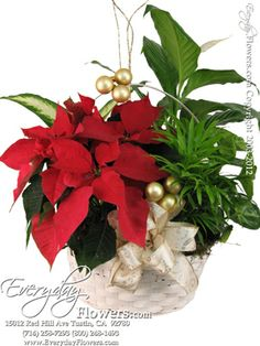 """Clip On Flower Floral Christmas Decorations Mesh Poinsettia Blue 9/"""" Pack 4"""