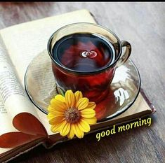 Cute Good Morning Images, Good Morning Gif, Good Morning Flowers, Good Morning Wishes, Good Morning Quotes, Morning Coffee, Sunday Wishes, Sunday Greetings, Good Night Lover