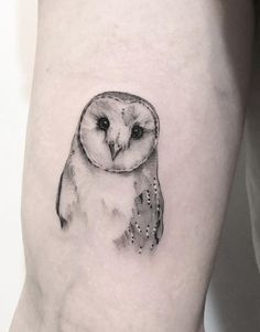 Today we're going to step again into the world of animal tattoos bringing you 50 of the most beautiful owl tattoo designs, explaining their meaning. Unique Half Sleeve Tattoos, Sleeve Tattoos For Women, Women Sleeve, Tattoo Designs, Owl Tattoo Design, Black And Grey Tattoos For Men, Black Tattoos, Owl Tattoo Small, Small Tattoos