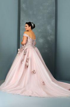 Court Train Off The Shoulder Plus Size A Line Tulle Wedding Dress Picture 3
