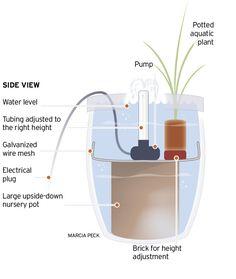 Fonte aquática simples passo a passo.