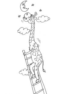 Girafe 28