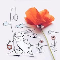 http://www.boredpanda.com/alice-in-wonderland-illustrations-poppies-cinzia-bolognesi/