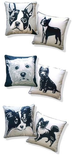 for my dog room