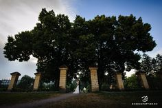 Sedinta foto trash the dress in sibiu - Palatul Brukental