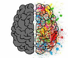 Image shows a brain split in half.