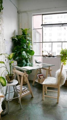 Right! Off to Ikea! Very cool workspace.. love the Fiddle Leaf Fig Tree + sawhorse glass combo