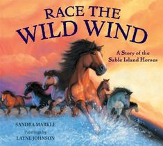Race the Wild Wind: A Story of the Sable Island Horses by.