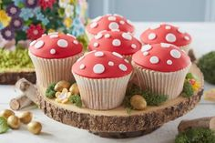 How to Make Toadstool Cupcakes #toadstool #cupcakes #mushroom #fairy #garden #baking #spring #easter #woodland #cake #decorating