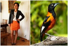 Bicho do Dia - Corrupião #look #ootd #fashion #moda #cea #myahaas