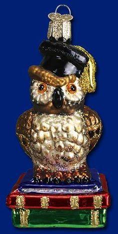 Graduation Owl Mouth Blown Glass Mercks Old World Christmas Ornament 16051 | eBay