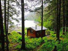 1000+ images about Good Cabins on Pinterest | Cabin, Little Cabin ...