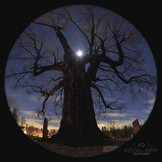 Dave Bennett-20160216-Life 360_graveyard | by Studio Fifty