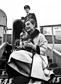 Audrey and her yorkie....can you tell I'm a little yorkie obsessed right now! I miss mine...:(