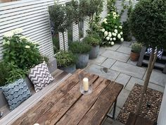 Garden Landscaping North London whether Small Garden Landscaping Ideas Nz wherever Urban Garden Lab Chicago. Urban Gardening Definition if Garden Landscaping Ideas Australia Garden Design London, London Garden, Modern Garden Design, Terrace Design, Patio Design, Contemporary Design, Back Gardens, Small Gardens, Outdoor Gardens