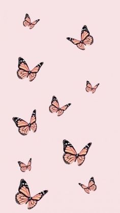 44+ Aesthetic Pink Butterfly iPhone Wallpapers HD
