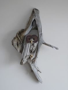driftwood owl@Holly trickhead