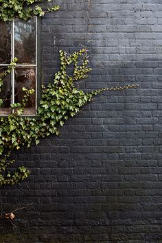 9 Surprising Ways to Decorate With Black Black paint in a matte finish gives an exterior brick wall a modern update. A creeping vine adds extra character to the irregular wall surface. Mimic the look at home with our pro advice on painting brick. Exterior Wall Design, Exterior Paint, Garage Exterior, Black Brick Wall, Grey Brick, Faux Brick, Black Walls, Painted Brick Walls, Pintura Exterior