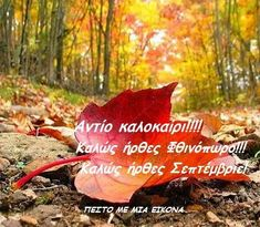 Greek Quotes, September, Christmas Ornaments, Holiday Decor, Movie Posters, Autumn, Photo Illustration, Film Poster, Fall