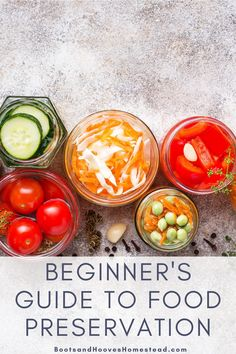 Beginner's Guide to Food Preservation. This guide is helpful for anyone wanting to start preserving their own food at home. You'll find guides to water bath canning, pressure canning, fermenting, dehydrating, and freezing. Plus a few delicious food preservation recipes! #canning #fermenting#dehydrating #foodpreservation Vegan Kitchen, Kitchen Recipes, Snack Recipes, Bone Broth Soup, Dehydrated Apples, Water Bath Canning, Pressure Canning, Preserving Food, The Ranch