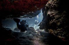 Las Eras Scuba diving in Tenerife  in cavern buceo, duiken, tauchen