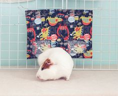 Guinea Pig Hay Bag / Guinea Pig Hay Pouch / Masculine / Hay Sack / Dinosaur Rock Band