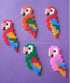 Bügelperlen Papagei