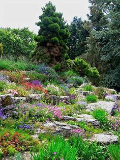 steingarten polsterstauden bunt blühend gestalten