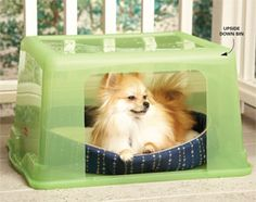 Use a plastic storage bin for a dog house