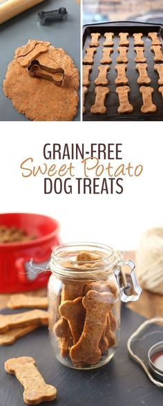 16 Homemade Grain-Free Dog Treat Recipes Treat your pup with these Grain-Free Sweet Potato Dog Treats made from just 5 wholesome and healthy ingredients. Your dog will love eating them as much as you enjoy spoiling them! Puppy Treats, Diy Dog Treats, Dog Treat Recipes, Healthy Dog Treats, Dog Food Recipes, Home Made Dog Treats Recipe, Pumpkin Dog Treats, Gourmet Dog Treats, Happy Healthy