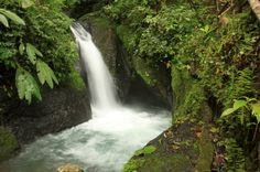 midworld waterfalls   - Costa Rica