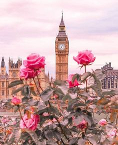 Big Ben – London, United Kingdom – England – United Kingdom / Great Britain – United Kingdom + Pink Roses / Pink Roses rnrnSource by irish_r Big Ben London, Big Beautiful Houses, Beautiful Places, Beautiful Beautiful, Cute Wallpapers, Wallpaper Backgrounds, Iphone Wallpaper, London United Kingdom, London Calling