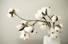 Cotton Wedding Decor | Cotton Wedding Trend: 12 Fresh Ideas | Weddingomania