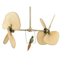 41 best fanimation images on pinterest ceiling fan blades fanimation palisade 8 blade double sided wide ceiling fan blades parrot wall control and extension pole included aloadofball Image collections