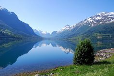 Norway... landscapes of my dreams - View on Olden from the North Side of Innvik Fjord in Norway - by Brave Lemming, via Flickr