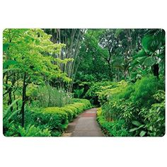 Forest Pet Mats for Food and Water by Lunarable, Green Plants Trees in Singapore Asia Botanic Gardens Walkway Travel Destination Arboretum, Rectangle Non-Slip Rubber Mat for Dogs and Cats, Green ** Details can be found by clicking on the image. (This is an affiliate link) #DogFeedingWateringSupplies