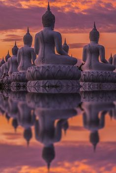 Spiritual/ Meditation journey through India. Top of my Bucket List:) Many Buddha statue on sunset, India (by Anek Suwannaphoom) Places Around The World, Oh The Places You'll Go, Places To Travel, Around The Worlds, Travel Destinations, Laos, Temples, Beautiful World, Beautiful Places