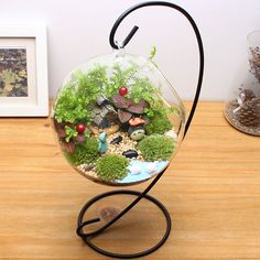 【diy Totoro Terrarium 】To see a World in a Grain of Sand。And a Heaven in a Wild Flower,Hold Infinity in the palm of your hand,And Eternity in an hour. Garden Terrarium, Succulent Terrarium, Succulents Garden, Planting Flowers, My Fairy Garden, Easy Garden, Little Gardens, Small Gardens, Diy Jardin