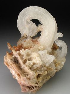 rams horn gypsum crystal classics photo
