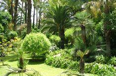 Jardin de l'Agdal