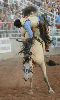 Cowboy And Cowgirl, Cowgirl Style, Cowboy Pictures, Cowboy Pics, Bareback Riding, Rodeo Events, Rodeo Cowboys, Rodeo Life, Bull Riding