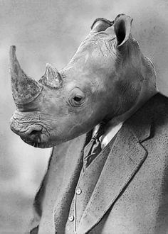 """Albert Rhino"" by Julien Kaltnecker on Displate #rhinoceros #animal #funny #displate #blackandwhite #suit"