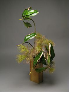 magnolia, pine | Ikebana | Japanese flower arrangement