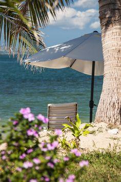 beach - Fiji island