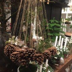 Christmas 2017, Plants, Christmas Decorations, Plant, Planets