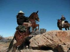 Extreme Mules, damn they are amazing!  I never realized until I rode one.