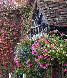 Pub in the village of Brockenhurst, New Forest ~ England  I like the cottage look, if not the pub, at least.